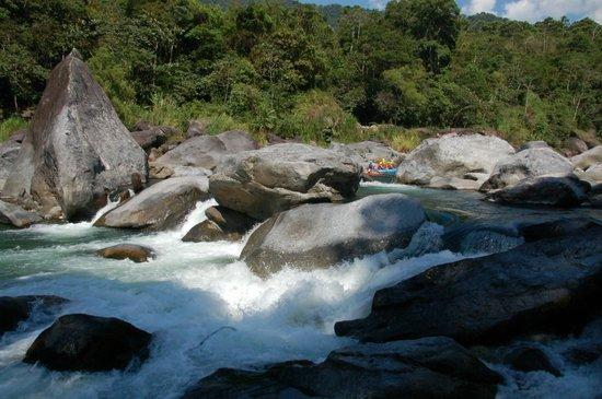 La Villa de Soledad B&B: Cangrejal river