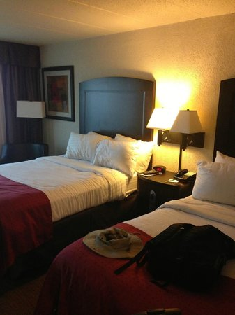 Holiday Inn & Suites Charleston West : Room