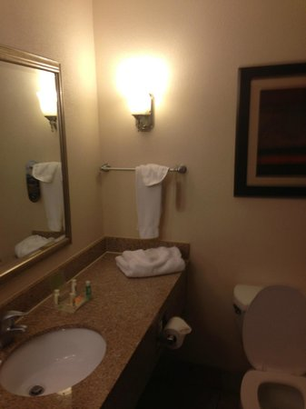 Holiday Inn & Suites Charleston West: Bathroom