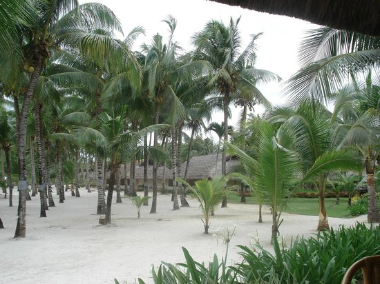 Bohol Beach Club: территория отеля