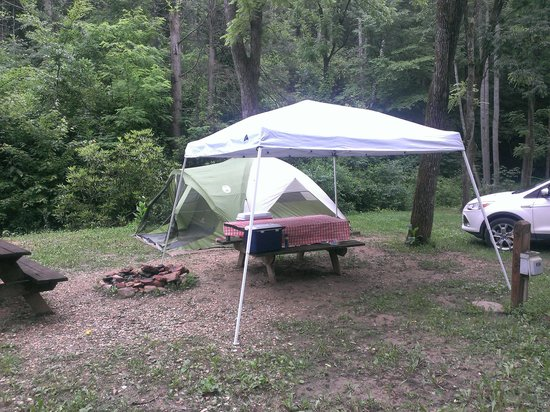 Turkey Creek Campground : Campsite