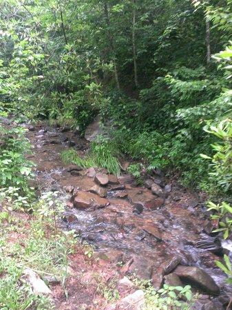Turkey Creek Campground : Beautiful Creek