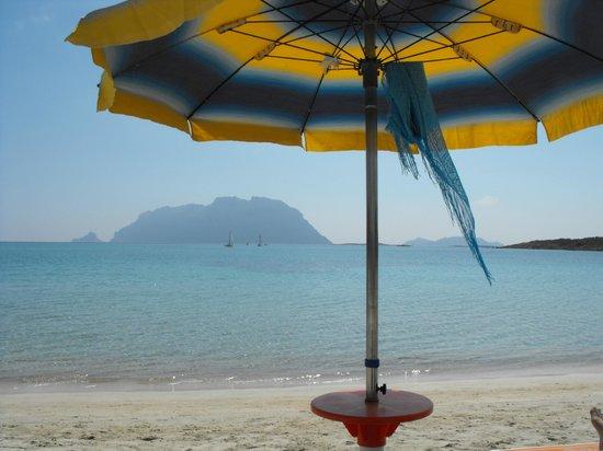 La spiaggia attrezzata dell'hotel Daniel
