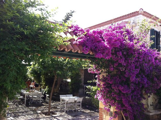 Alacati Zeytin Konak Hotel: The gardens