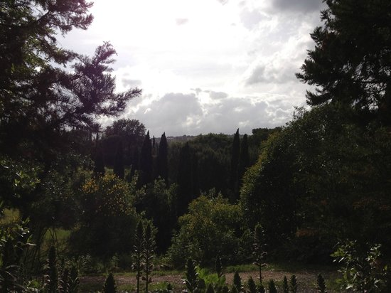 Florence House Rental - Villa I Cipressi & Villa Calcinaia: Looking out from villa