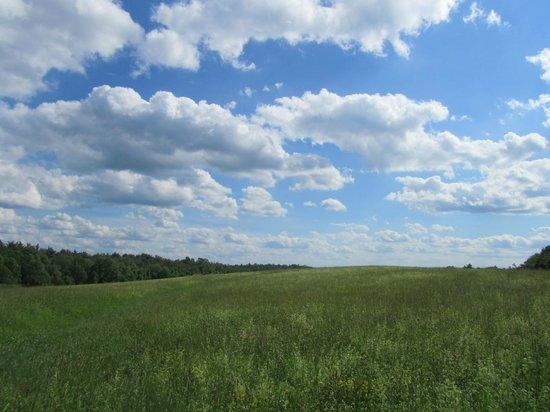 Moore State Park: Landscape