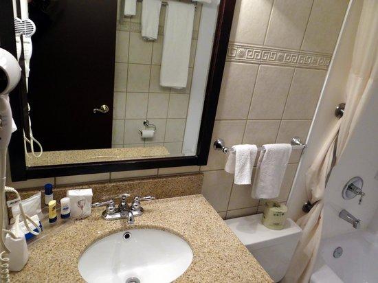 Hotel des Eskers: bathroom