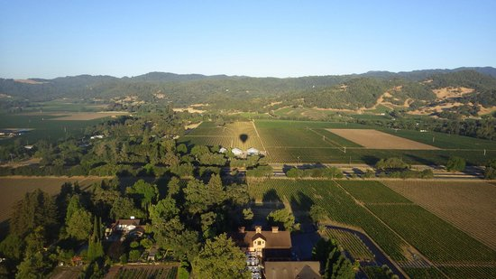 Napa Valley Drifters: Flying over Napa Valley.