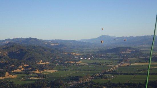 Napa Valley Drifters: Balloon floating over Napa