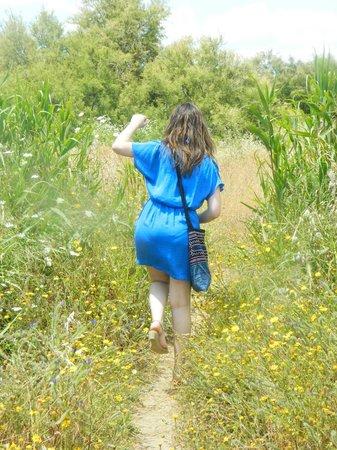 Parque del Guadalhorce : Petit chemin