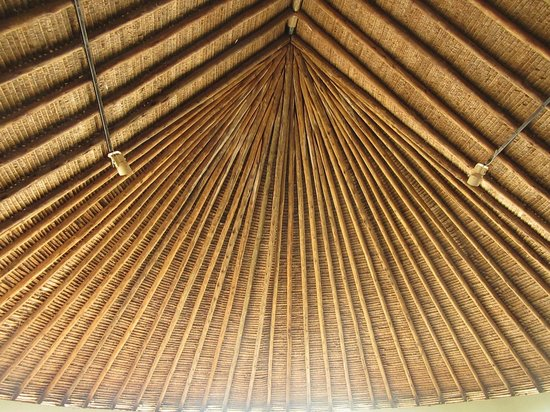 Tarangire Safari Lodge: Magnificnet Makuti roof