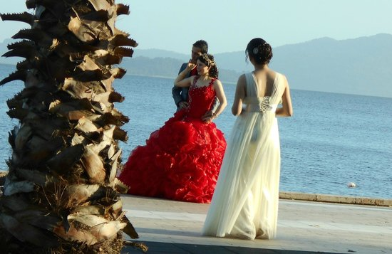 Aydos Club: Just happened to be passing a Turkish wedding - lovely photo