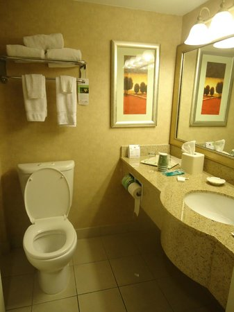 Wingate by Wyndham Tampa/At USF: Baño