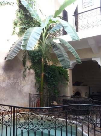Riad Sharmance : Patio