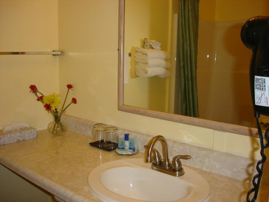 Value Inn Motel : bathroom sink