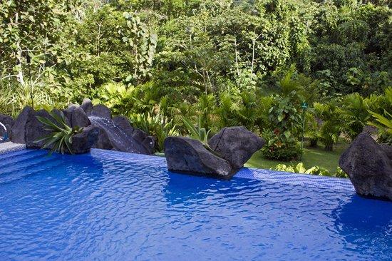 Hotel Pumilio: Swimming pool
