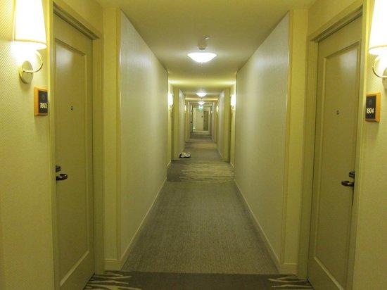 Sheraton Grand Sacramento Hotel: Guest Room Corridor