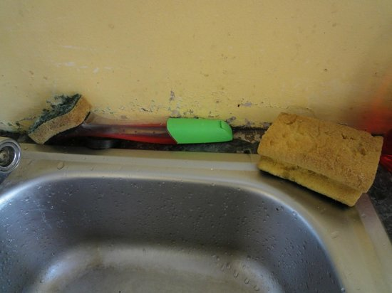 Paddy's Palace : Wash up your dishes