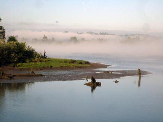 Inn at Skamokawa Landing: Fog in the morning