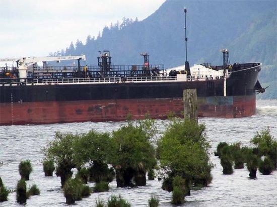 Inn at Skamokawa Landing: Large ship on the way to Astoria