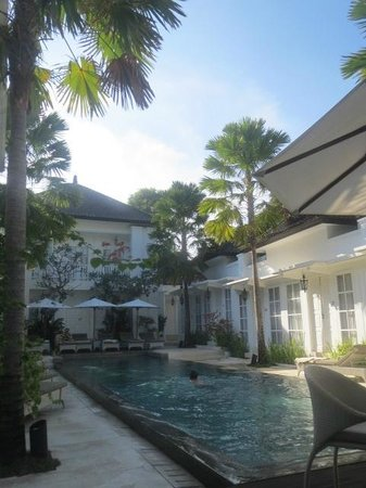 The Colony Hotel Bali: excellent place, wonderful plants!!!