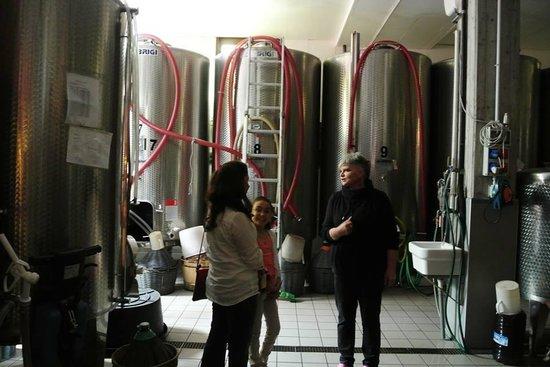 La Zerla: inside winery