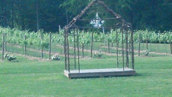Natchez Hills Vineyard: Vinyard wedding venue