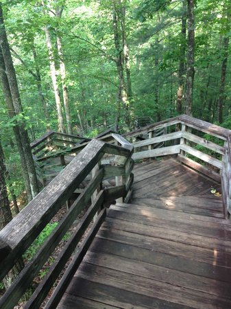 Stone Mountain State Park: The Never Ending Stairs