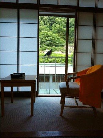 Higaki Hotel: ハトが侵入してきそう!