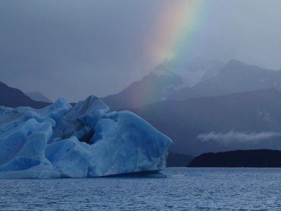 Todo Glaciares Tour