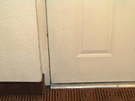 La Quinta Inn Deerfield Beach I-95 at Hillsboro E: stains on door
