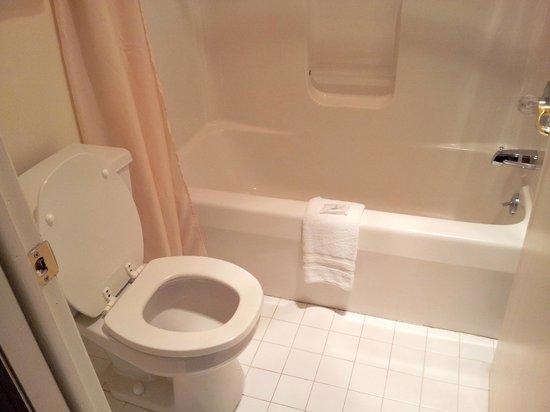 Red Carpet Inn & Suites Leatherstocking Lodge: Bathroom