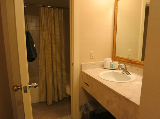 The Hotel Majestic St. Louis: Toilet separate from sink, convenient if not alone!