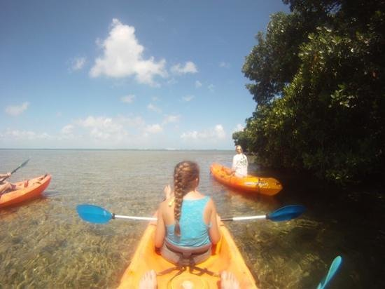 Key West Eco Tours Foto