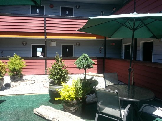 The New 401 Hotel : Our Comfortable Courtyard