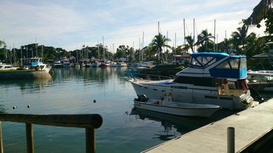 Vuda Point Marina Fiji: Marina