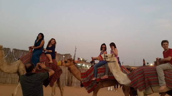 Arabia Horizons Tours: Camel Ride