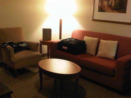 Hilton Garden Inn Toronto/Ajax : Separate sitting room with TV