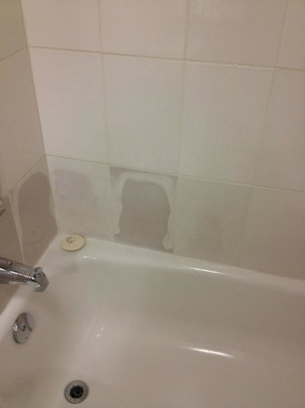 Abercorn Inn Vancouver Airport: bathroom in need of a remodel