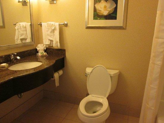Hilton Garden Inn Jackson Downtown: Nice Clean Bathroom