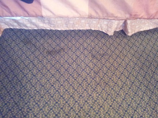 Days Inn Fort Payne: carpet