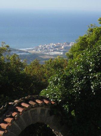 Quinta Colina Flora Biolandgasthau: Distant Ocean View