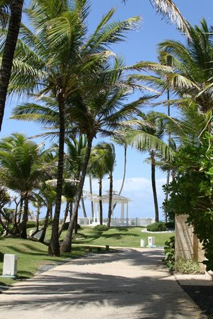 Paradisus Punta Cana Resort: Path to beach area