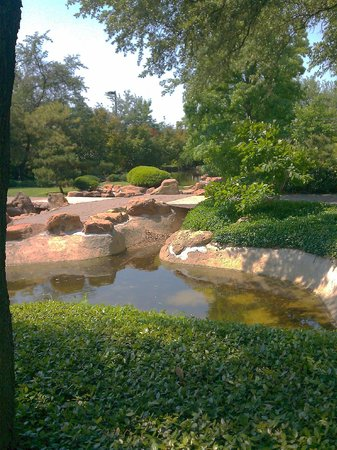 Picture of fort worth botanic garden fort worth tripadvisor for Fort worth botanical gardens hours