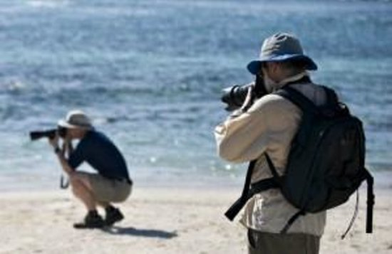 Serenity on the Lake Bed and Breakfast: Photography Workshop