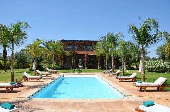 Vue de la villa depuis la piscine picture of villa for Villa jardin nomade
