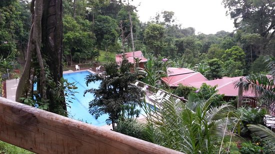 Mar y Selva Ecolodge: idem
