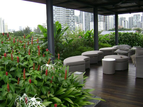 The Forest by Wangz: Wonderful Roof Lounge