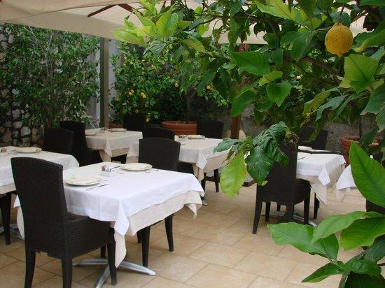 Hotel Canasta: la colazione