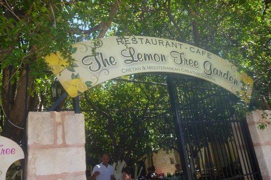 Lemonokipos Restaurant : L'accès à la terrasse